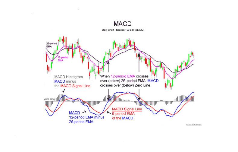MACD indicator(s) - cTrader